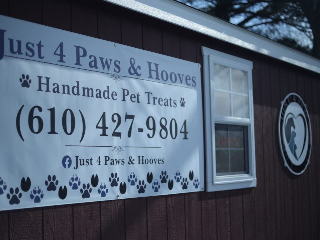 just 4 paws & hooves