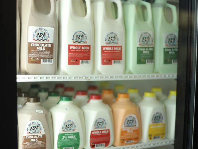 fridge filled with different varieties of milk from a local dairy